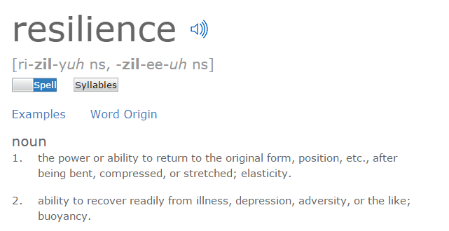 Resilience   Define Resilience at Dictionary.com